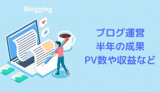 ブログ半年の収益やアクセス結果:30記事・月間1000PV超え・収益は数100円w